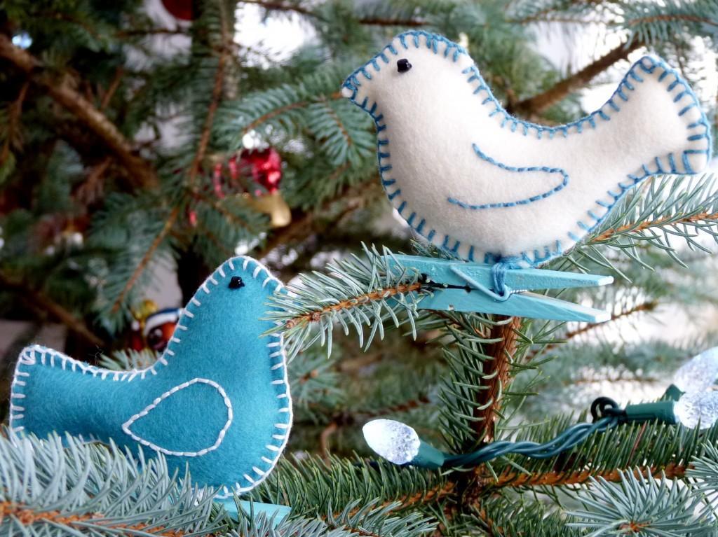 filcowe-ptaki
