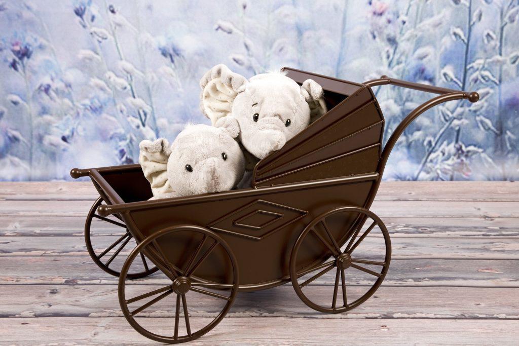 stroller-1678232_1920